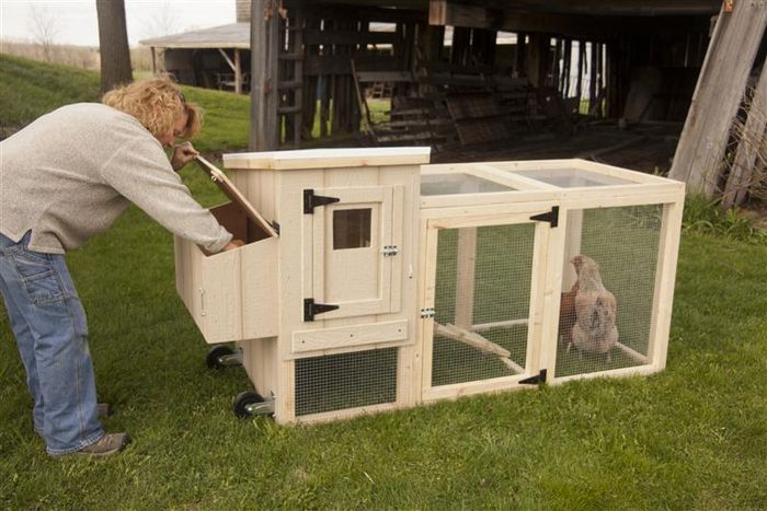 Where Can I Buy A Portable Chicken Coop?