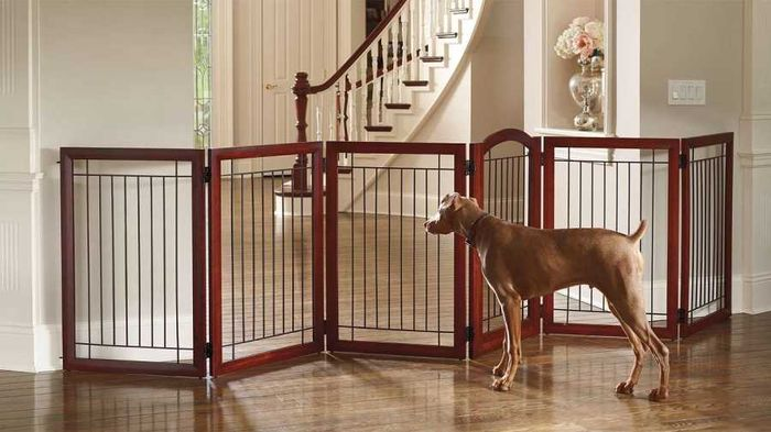 Fence For Dogs >> Portable Dog Fences - The Ultimate Buying Guide: Paws Away! Choosing A Dog Fence - WOOF!